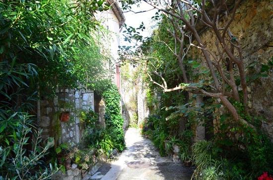 Une ruelle de St Paul de Vence avec une végétation très dense